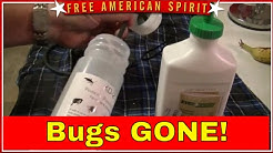 Insect Destroyer  Kill Bedbugs, Yellow jackets, fleas, ticks, bees etc