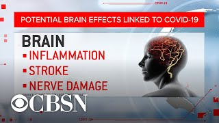 Scientists warn brain damage may be linked to COVID-19