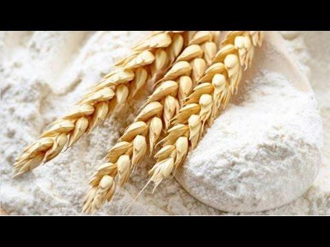 Curso Básico de Panificação - Farinha de Trigo