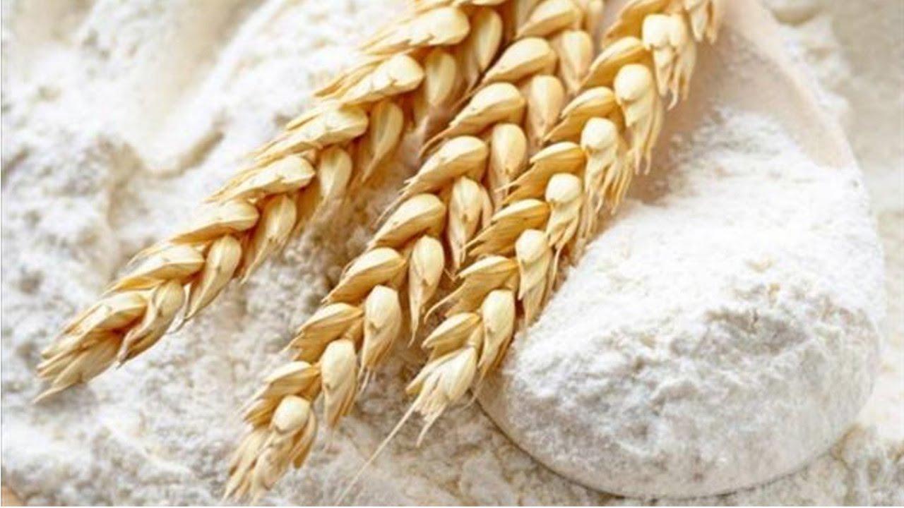 Resultado de imagem para farinha de trigo