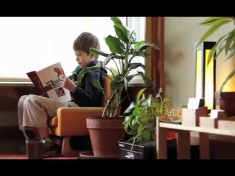 Daycare Alternative | Oceanside, CA – Peppertree Montessori