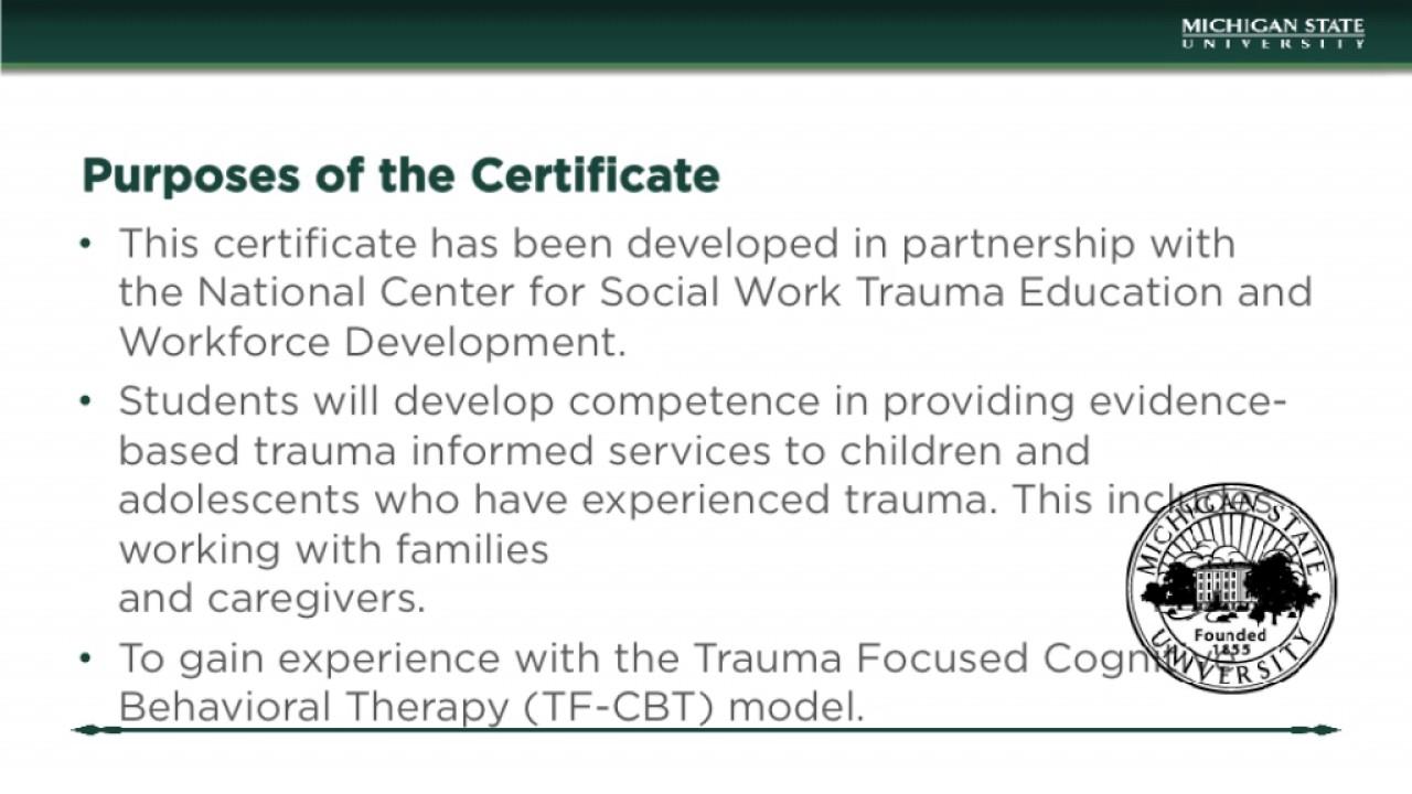 Evidence Based Trauma Treatment Certificate Ppt Youtube