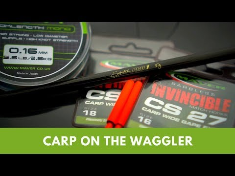 Carp On The Waggler
