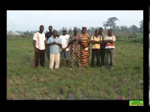Brave Paysan / La production du riz en Côte d'Ivoire