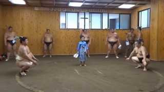 大相撲をこよなく愛する小学三年生です。尾車部屋を訪問させていただき...