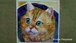 Рисуем кота Хосико акварелью