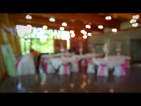 Weddings & Receptions: the Bissell Tree House at John Ball Zoo