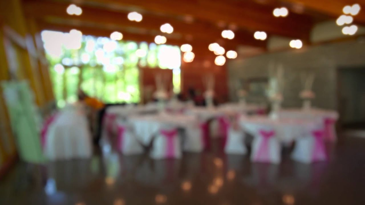 weddings receptions the bissell tree house at john ball