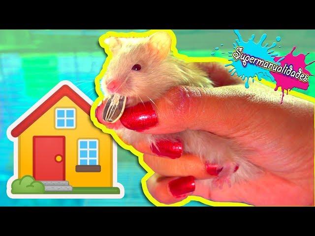 Me lastimé con la casa nueva de los Hamsters - Supermanualidades