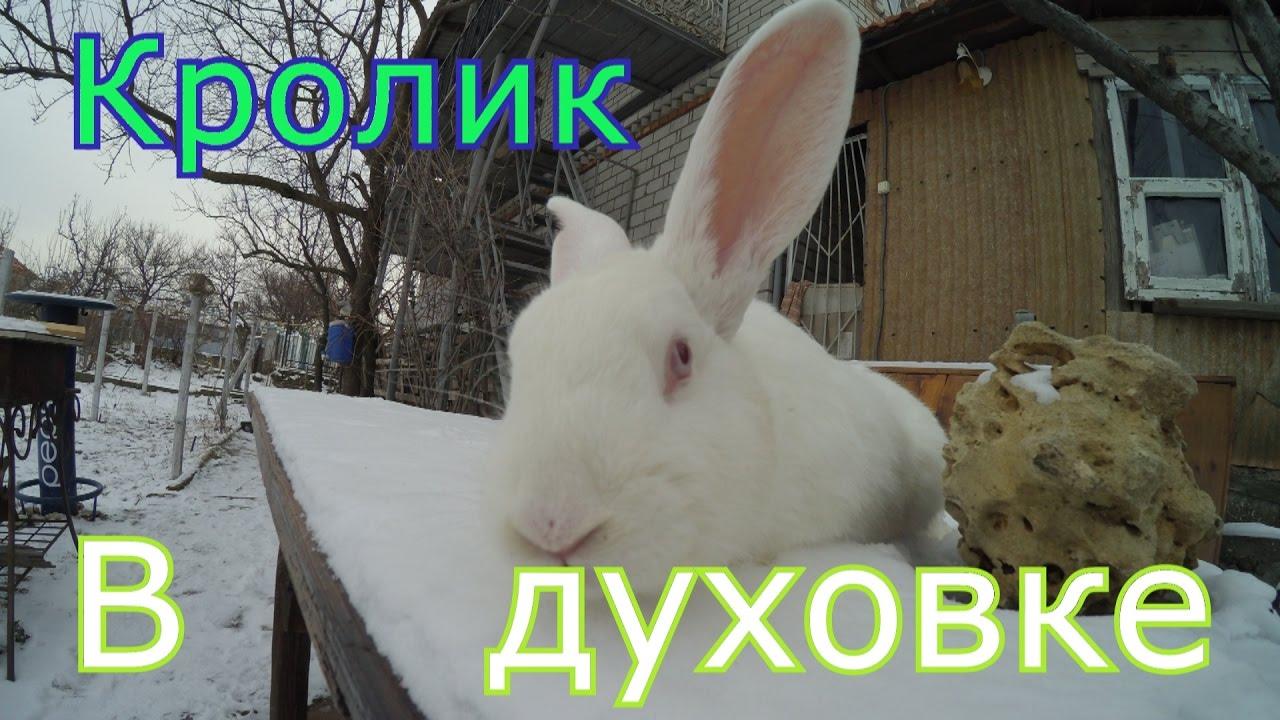 Кролик/в Духовке/Целиком|рецепт как приготовить кролика в рукаве