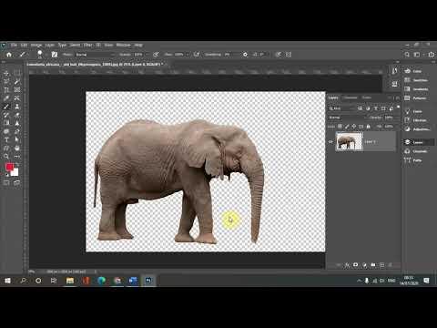 Học Photoshop: Tạo ảnh động trong Photoshop với Puppet Warp