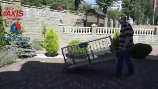 Весы для свиней AXIS 4BDU300Х-0615-Б (видео обзор). Гиперцентр
