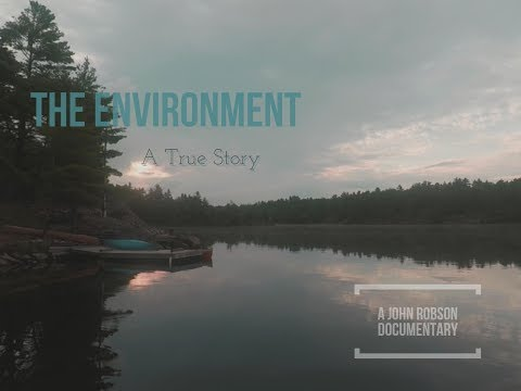 The Environment: A True Story