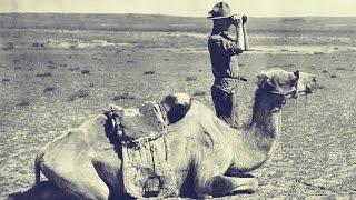 Fossil Hunting In the Gobi - Shelf Life 360