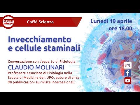 Caffè Scienza - Invecchiamento e cellule staminali