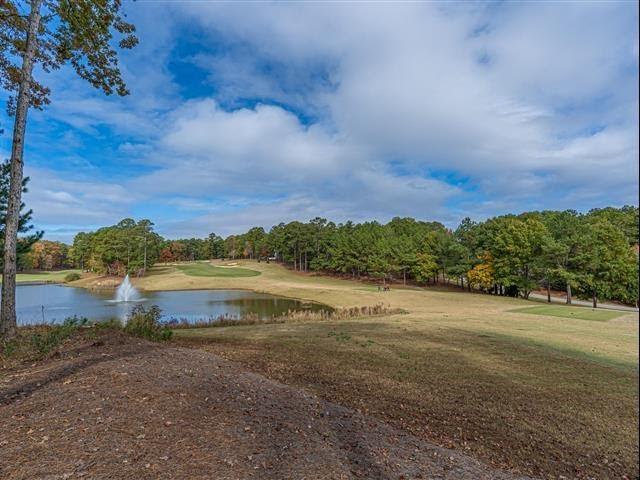 Homes for Sale - 1040 Hatties View, Greensboro, GA