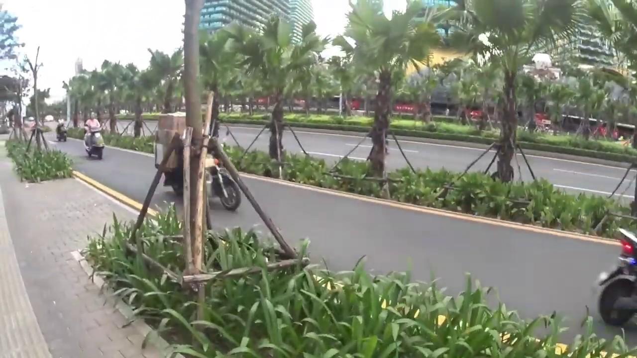 Дома-деревья на острове Хайнань, снесут ли?