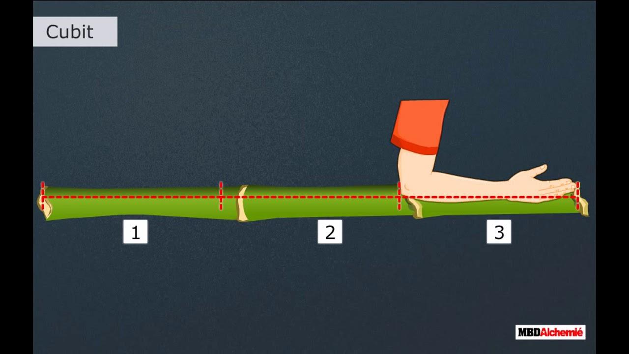 Class 2 Maths - Chapter Length   Length (Non Standard Units) - YouTube [ 720 x 1280 Pixel ]