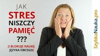 Jak Stres Niszczy Pamięć i Blokuje Naukę Języka Obcego?