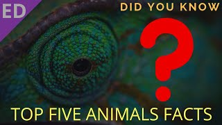 5 Incredible facts about animals that you never know!! ||🔥WEDNESDAY TOP FACTS 🔥