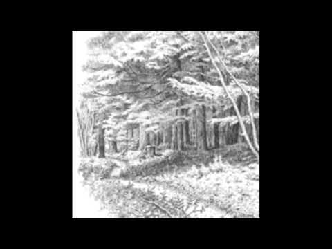 Walden - Despondent Fields