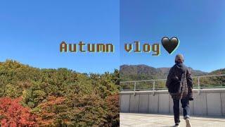가을 | 전시 | 과천현대미술관 | 바스키아 | 롯데뮤…