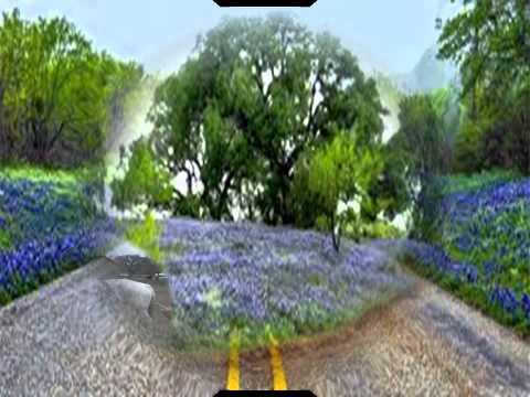Blue Bonnet Highway Gary Wright
