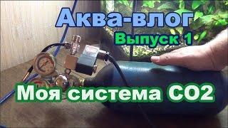 Аква-влог выпуск 1. Обзор моей системы CO2