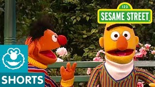 Sesame Street: Bert's Imagination