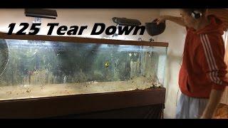 How To Tear Down An Aquarium, 125 Is Gone, Break Down A Fishtank