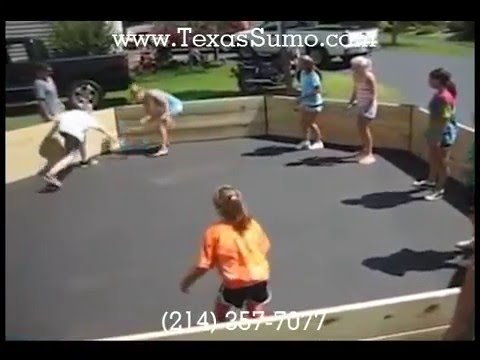 Octagon GaGa Pit for Rent from Texas Sumo - Dallas, TX
