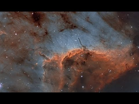Pelican and Butterfly Nebula Captured
