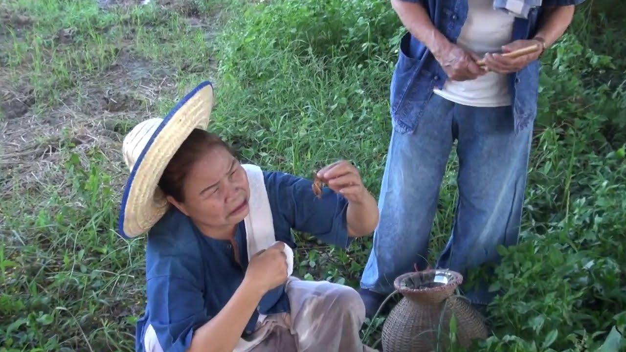 ขาวซาลาเปา - คนเฒ่าจิ้งกุ่ง    โดยการันตีโปรโมชั่น