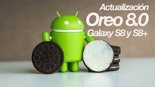 Actualiza tu Galaxy S8 y S8+ a Oreo 8.0 oficial!
