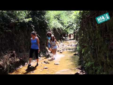Há Festa na Aldeia 2014 | Areja