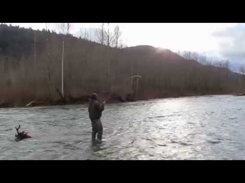 Winter Steelhead On The Spey Rod