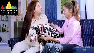 Priyasakhi Telugu Movie Part 4/13 | Madhavan, Sada | Sri Balaji Video