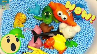 Learn Colors  with Zoo Animals Suprise Toys For Kids Children Education Video with Foam Beads
