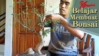 Bonsai Kawista #03 - Wiring Pertama