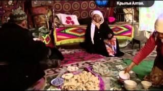 Исчезающие миры  Балапан  Крылья Алтая фильм Хамида Сардара