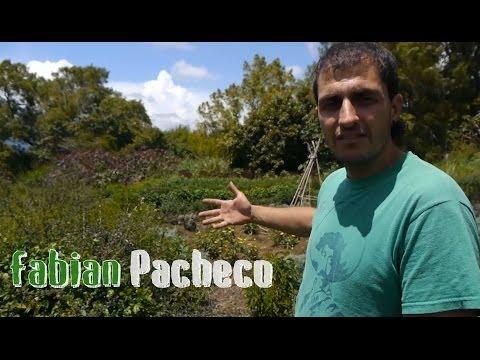 Fabian Pacheco