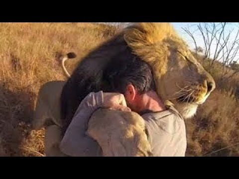 [Documentary National Geographic] Friendship Between People and Animals Wildlife