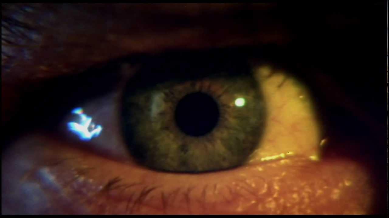 Wolfen (Theatrical Trailer)