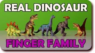Finger Family Crazy Dinosaur Toy Family Nursery Rhyme | Funny Finger Family Songs For Children In 3D