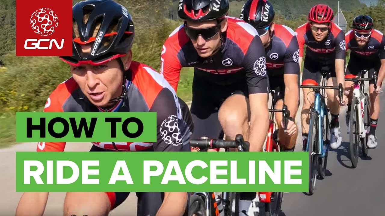 What do the Tour de France, a flock of birds and The Pack have in common?