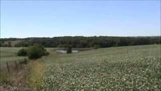 113 acres Worth County, Missouri