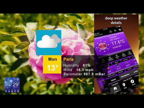 Weather Forecast App Weather Channel Weather Map - Apps on