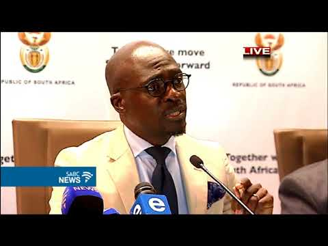 Home Affairs Minister Gigaba on issues of long queues