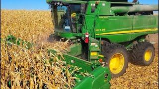 Harvest just got a lot BRIGHTER!