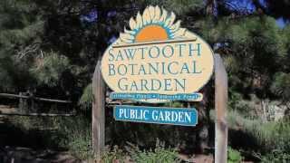 WRJC Picnic  2013 (Sawtooth Botanical Garden) - 15 minutes